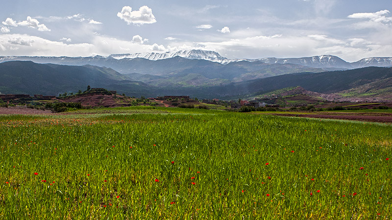 Lubos-Horvat-morocco-trip-2012_046